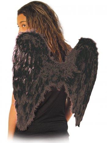 Ailes d Ange Noire - 50 cm