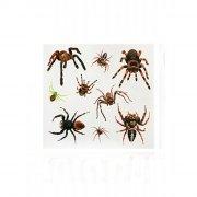 Tatouages Halloween Araignée
