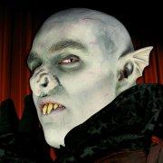 Maquillage latex Oreilles de Vampire
