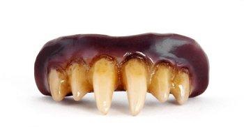 Dentier de Vampire Nosferatu