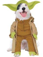 Déguisement pour Chien Yoda