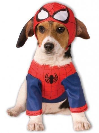 Déguisement pour Chien Spiderman