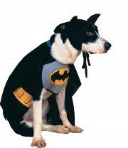 Déguisement pour Chien Batman