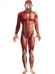 Déguisement Homme Anatomique