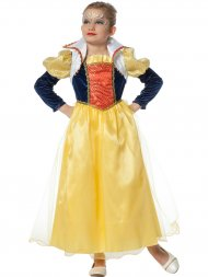 Déguisement Princesse Conte de Fée Luxe