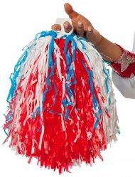 Pom-pom Tricolore