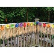 Frise à Franges et Hibiscus Multicolores