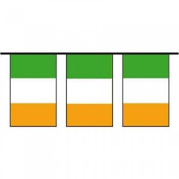 Guirlande à fanions drapeau irlandais (10m)